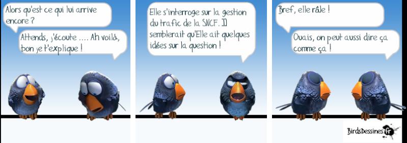http://i16.servimg.com/u/f16/09/02/08/06/oiseau10.png
