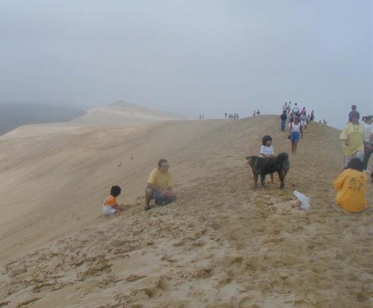 Dune Du Pilat 33 La Plus Haute Dune De Sable D Europe border=