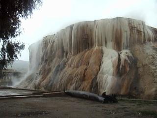 حمام المسخوطين الجزائر