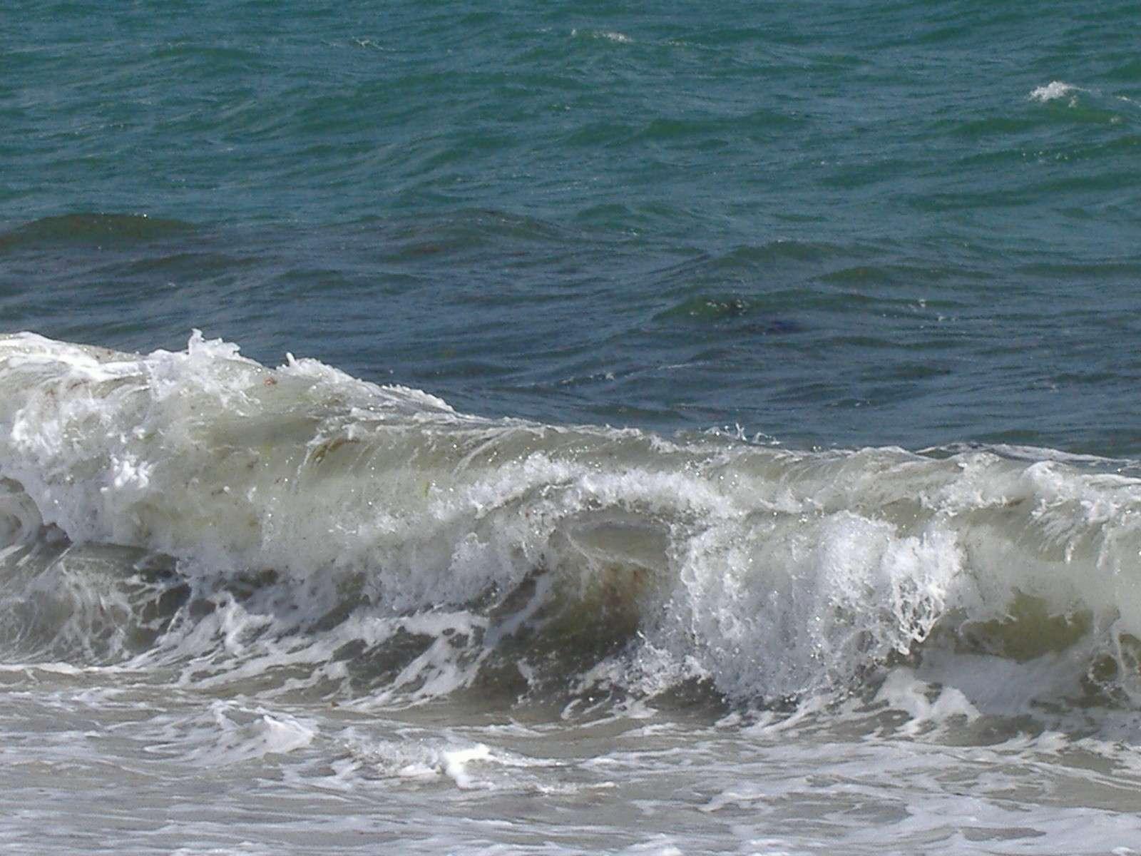 Chant des vagues.... dans Des instants... juin_210