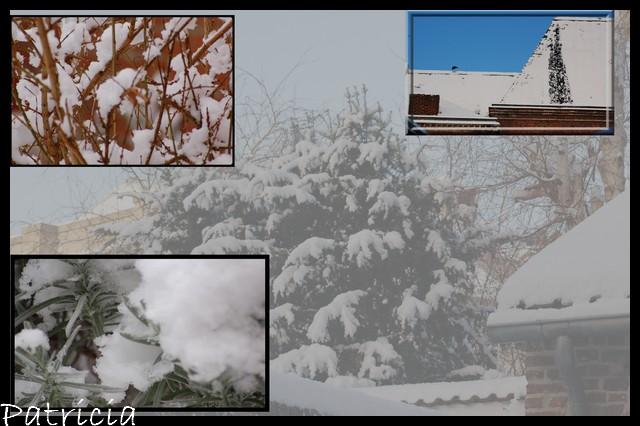 a plus de neige.. dans cachou 55410