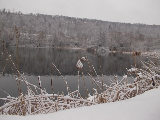 neige215.jpg