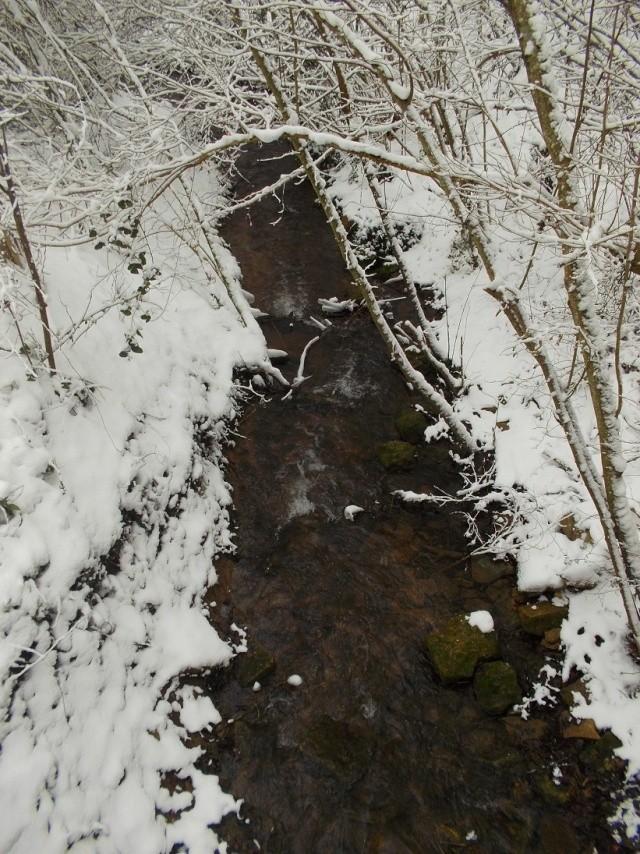 neige217.jpg