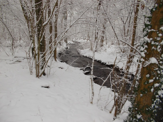 neige220.jpg