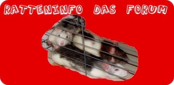 Ratteninfo