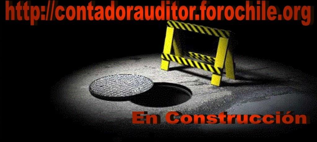 Contador Auditor