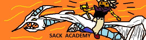 Sack Academy