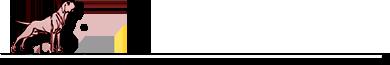 Отдается кобель голой мексиканской собаки, любимая порода Фриды Кало)