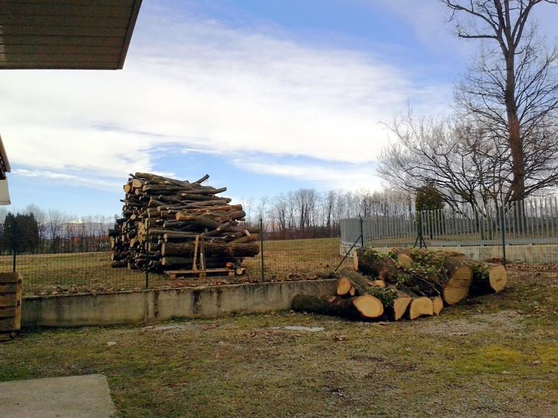 Tabella peso specifico legna da ardere prezzi legna da for Legna da ardere prezzi